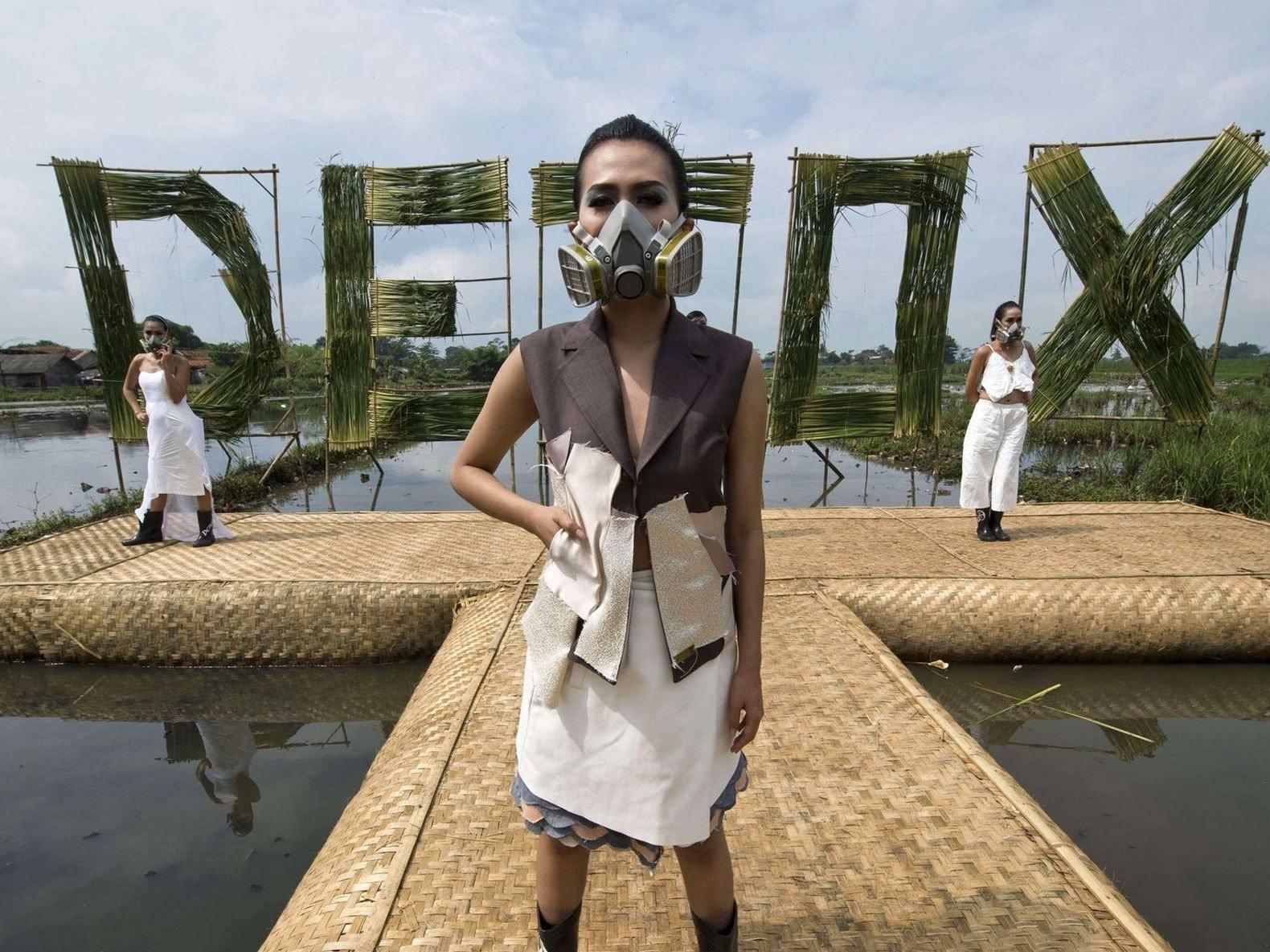 Camisetas de algodón: Campaña Detox de Greenpeace